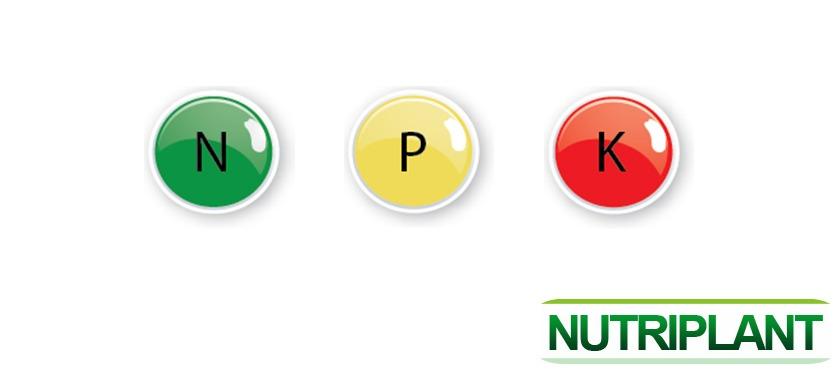 Informatii despre elementele NPK – Azot / Fosfor / Potasiu
