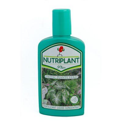 Nutriplant Exotic plante verzi 300 ml