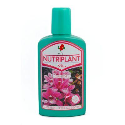 Nutriplant Orhidee 300 ml